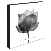 Block - Harmony lotus